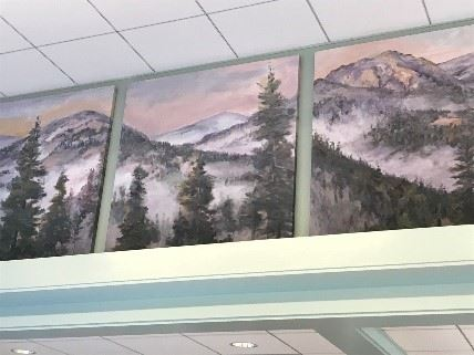 Oakmont East Rec Center Art