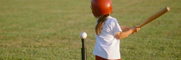 Youth Little Sluggers Header