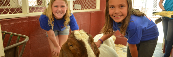 Girls with Goat in Animal Barn