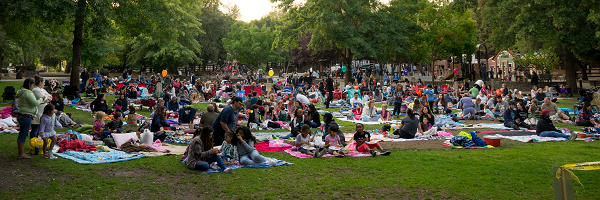 Movies in the Park Crowd