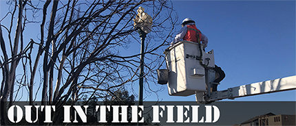 Out in the Field November 2019 Header thumbnail