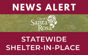 News Flash: Statewide Shelter in Place