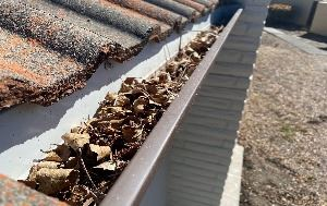 Leaves and debris in roof gutter