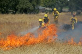 Firefighters fighting a fire in a dry field.