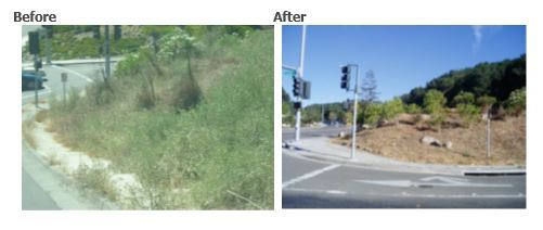 Photo showing a piece of property before and after weed abatement.
