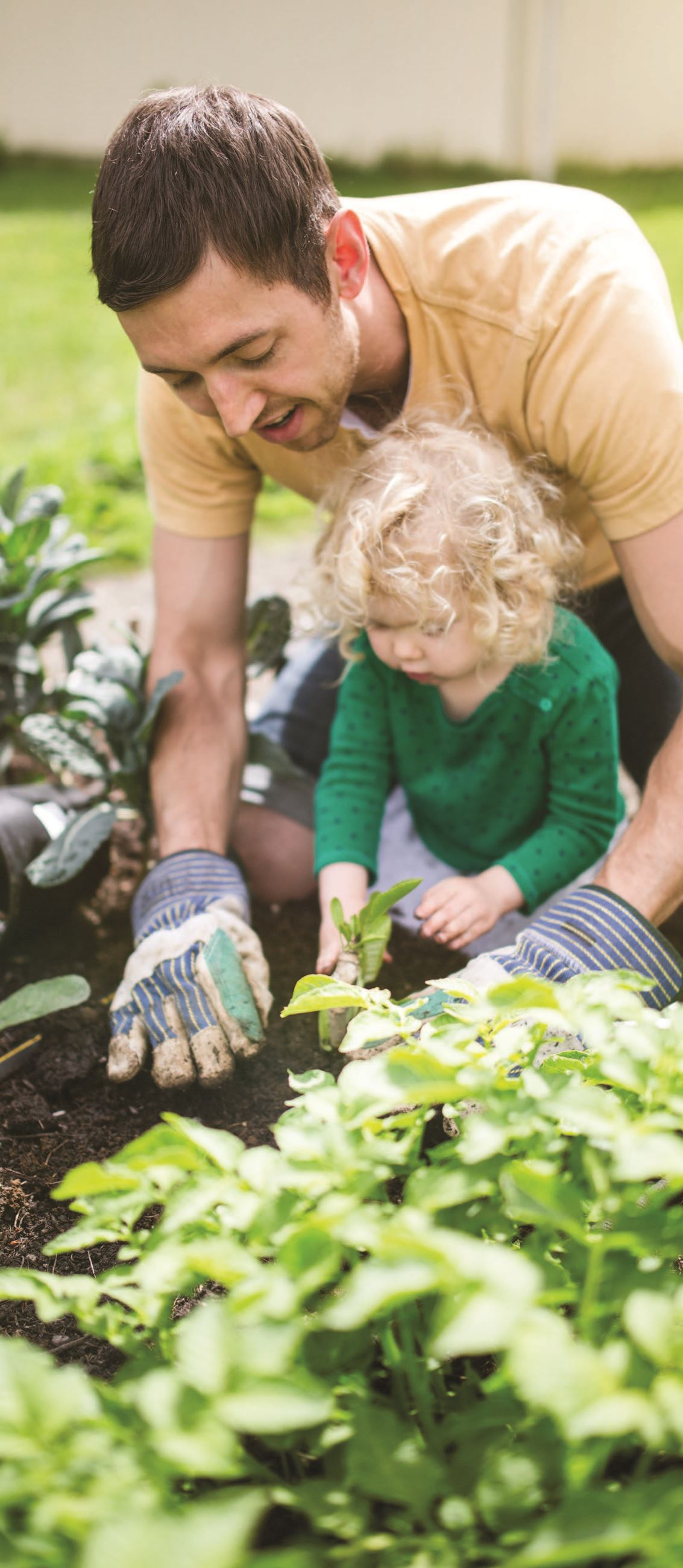 Father and daughter planting